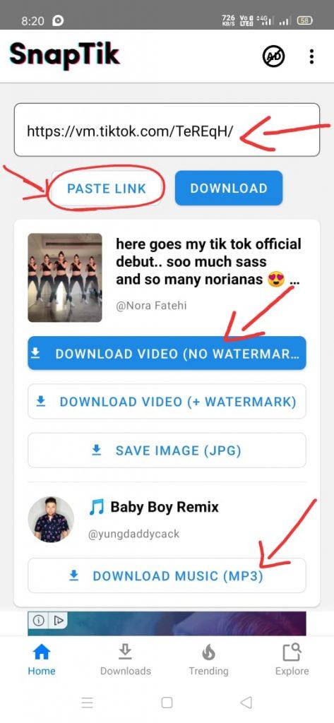 tiktokvideo downloader